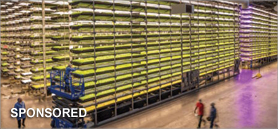 Elevate your indoor cultivation facility with insulated metal panels