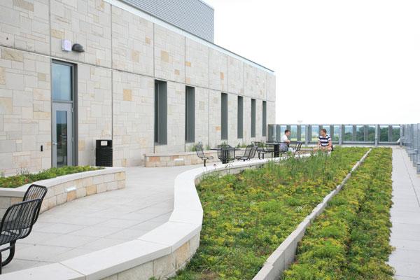 LiveRoof Standard Modular Vegetated Roof System