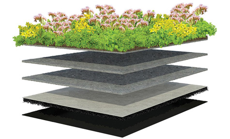 Lightweight Green Roof, Good Stormwater Retention - XF301 Sedum Standard