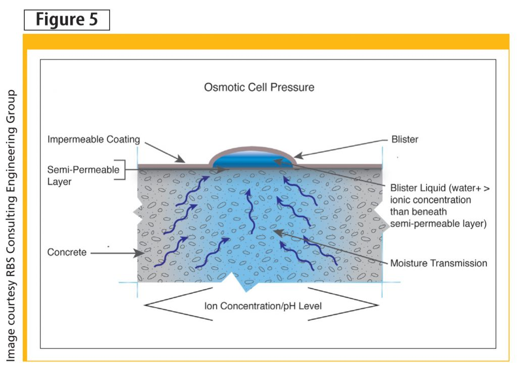 Osmosis occurs across the semipermeable layer. Low-permeance coatings do not allow for its evacuation, causing a blister to form.