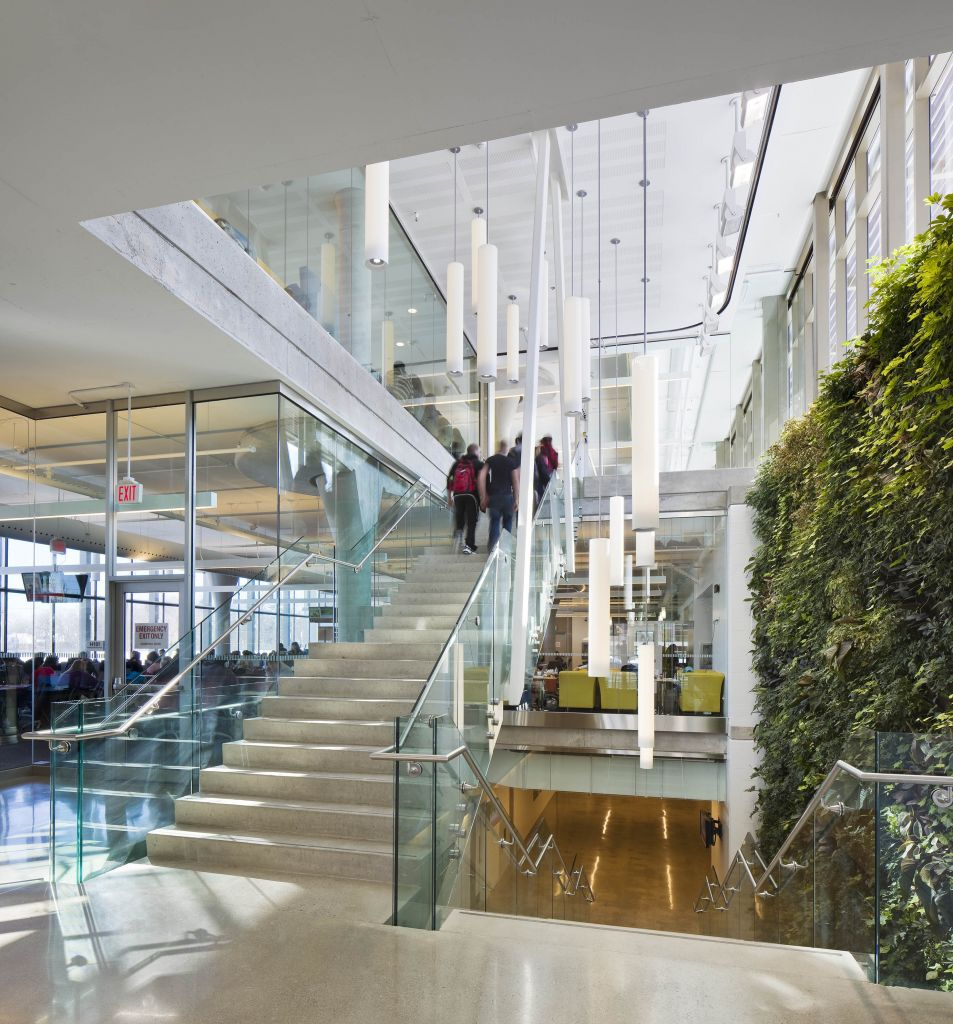 In addition to a vegetated roof, a two-level living wall welcomes visitors in the building's front entrance. The local plants used act as natural bio-filters and improve the indoor air quality (IAQ).