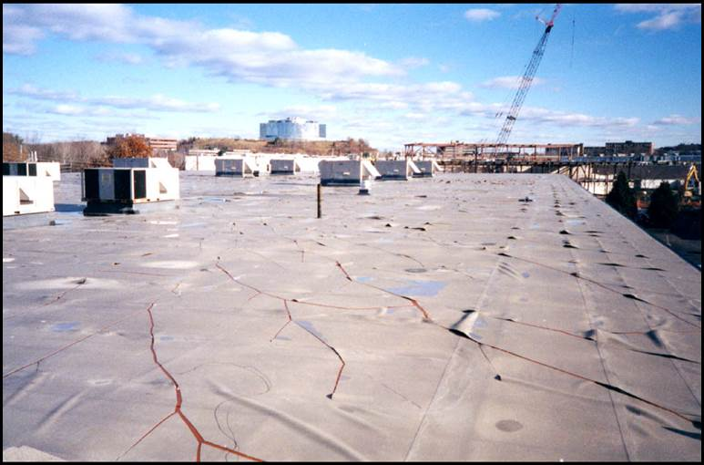 History illustrates the risk in using roofing products lacking a track record of proven performance. Catastrophic shattering of unreinforced polyvinyl chloride (PVC) roofing membranes resulted in leakage and damage to many buildings.