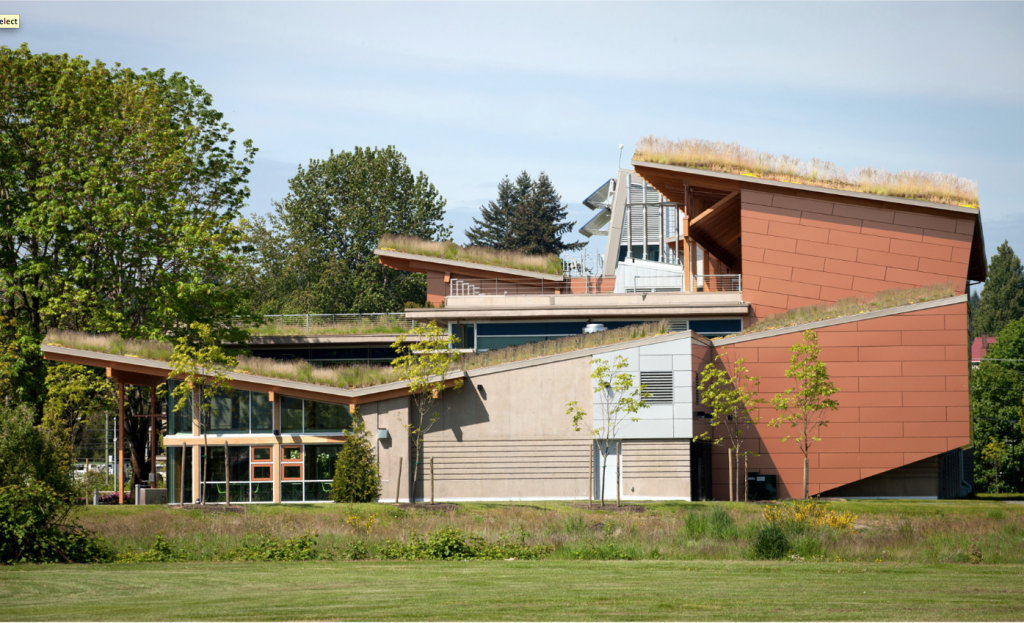 Vegetated Roofing Assemblies Recognized Construction Canada