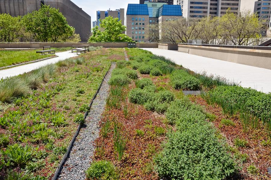 bigstock-Rooftop-Garden-32782913