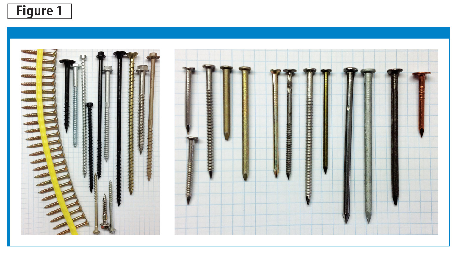 These photos show examples of screws (left) and nails (right) used in light-frame construction. The example screws include collated screws for subfl oor fastening, metal connector screws, and purposed wood screws.The nails include metal connector nails (e.g. stainless ring-shanks and mechanically galvanized), general framing and sheathing nails including bright smooth-shank, ring-shank stainless, and hot-dip galvanized, masonry nail, and a copper roofi ng nail.