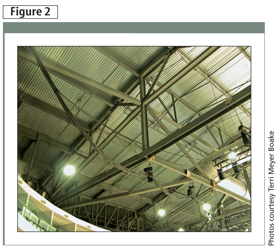 AESS 1 can be typifi ed by the truss structure of the Ricoh Coliseum in Toronto. The arrangement and design of the roof trusses is better than those of a concealed steel structure, but detailing is removed from view to negate a lot of fuss.