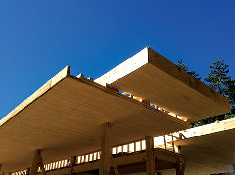 Cross-laminated timber in-situ