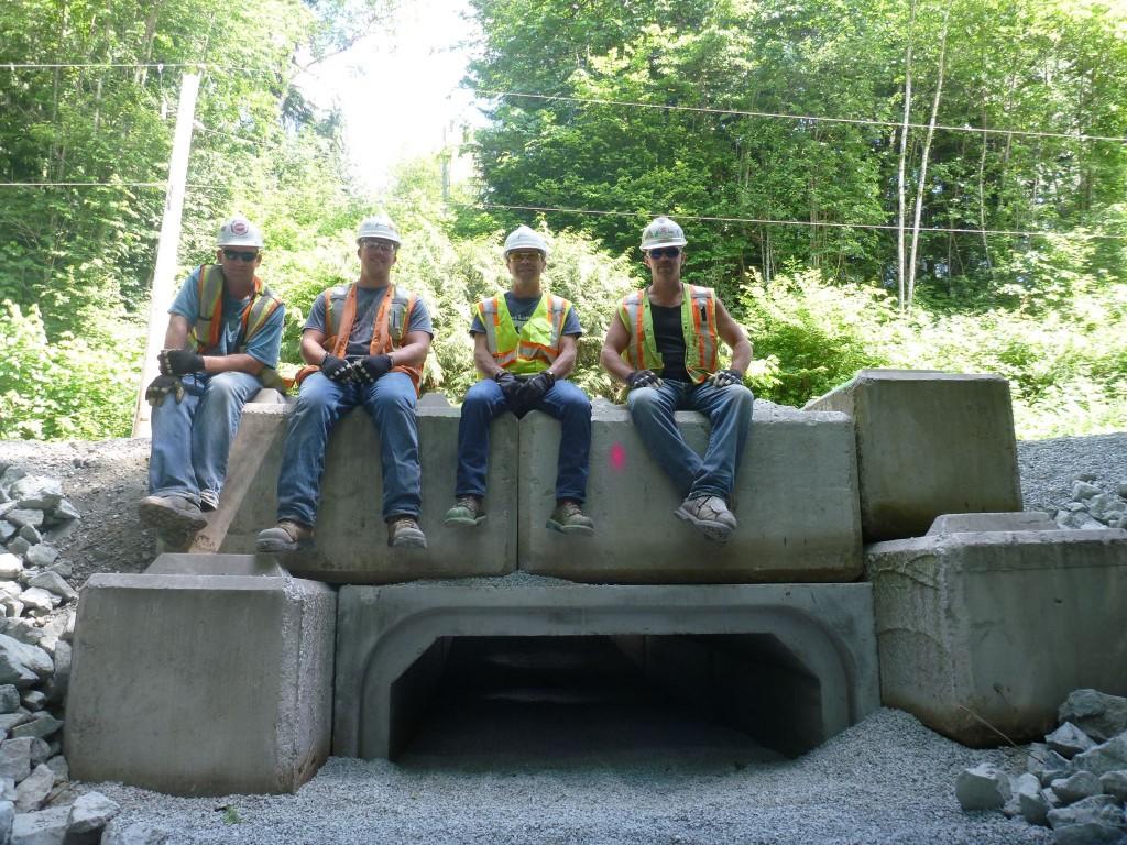 Lafarge Volunteers Atop Amphibian Tunnel