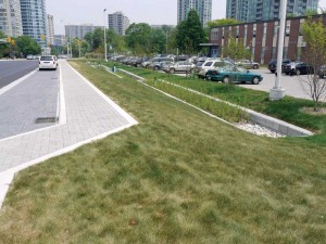 The green street project at Elm Drive in Mississauga, Ont., has low-impact development (LID) practices that clean water naturally. This project consists of bioretention planters and permeable pavement that work together to slow, filter, and clean stormwater on its way back to Cooksville Creek and Lake Ontario.