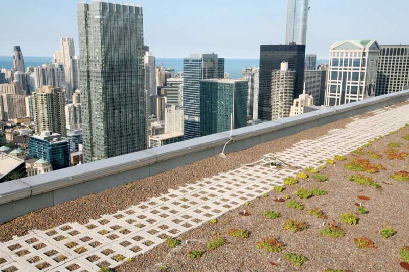 Designing Vegetated Roofing For Wind Forces Construction
