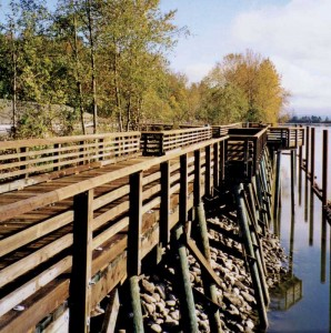 Creosote-treated marine pilings support a waterside pedestrian walkway. Photos courtesy Wood Preservation Canada