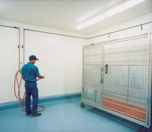 Veterinary animal holding areas are challenging spaces for any surface coating considering the constant abuse and frequent, aggressive cleaning techniques to which they are exposed. Photo courtesy Tnemec Company