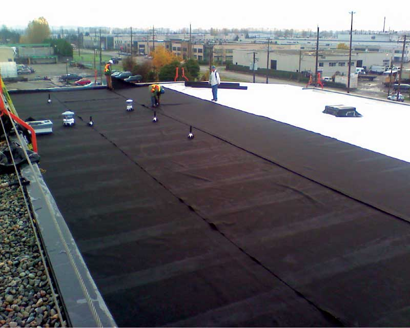 Waterproofing Considerations For Green Roofs