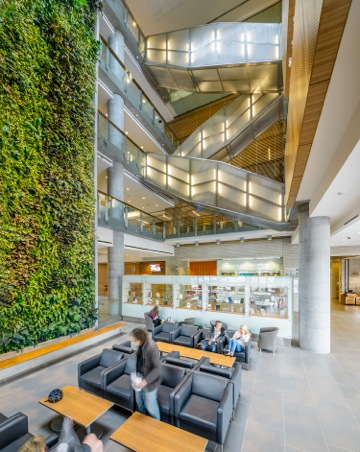 The Ottawa Social Sciences building contains a large living wall in the atrium, for students and visitors alike to congregate around.