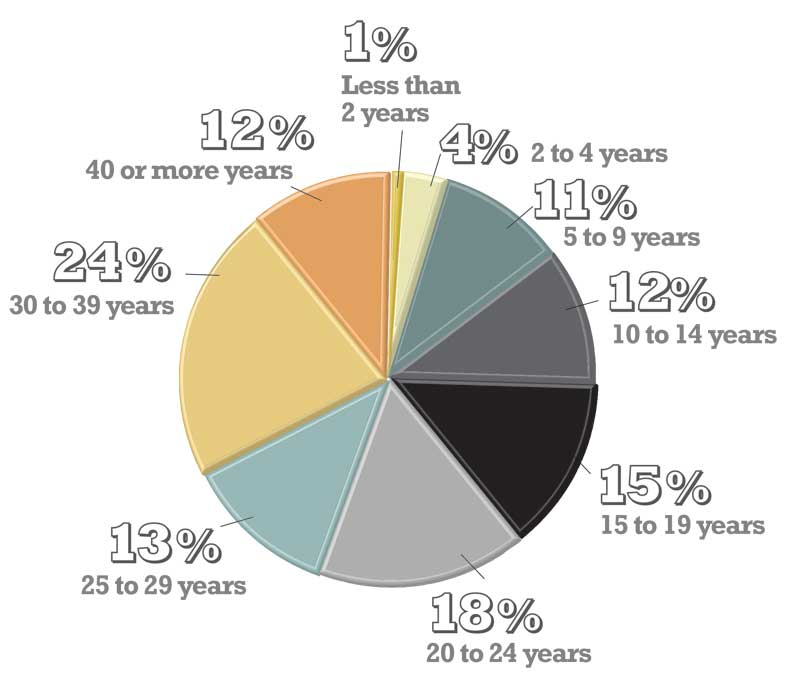 How long have you been in the industry?