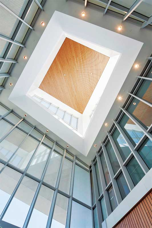 Specifying steel curtain walls with enduring beauty