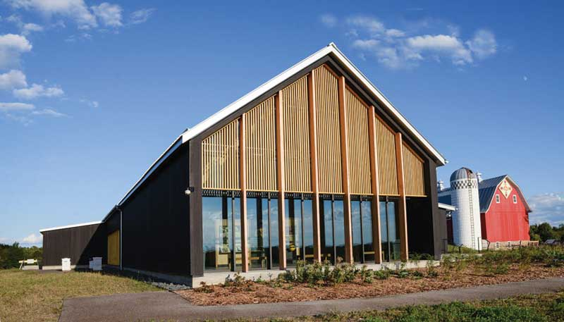 Building Green With Modified Wood Using Acetylated Wood