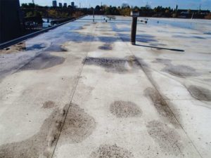Thermoplastic olefin (TPO) roof membrane on a warehouse in Scarborough, Ont.