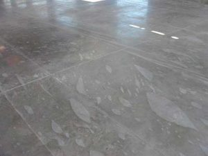 Figure 2: Floor slab exhibiting differential curing marks. The curing cover likely had trapped air when applied. Photo courtesy Chris Sullivan Chem systems