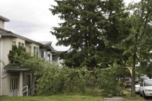 A recent report recommends a new national standard for the country in response to high-wind damage to Canadian homes. Photo © www.bigstockphoto.com
