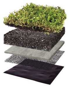 A traditional vegetated roof has the five layers of vegetation, engineered growing, retention, drainage, and root barrier.